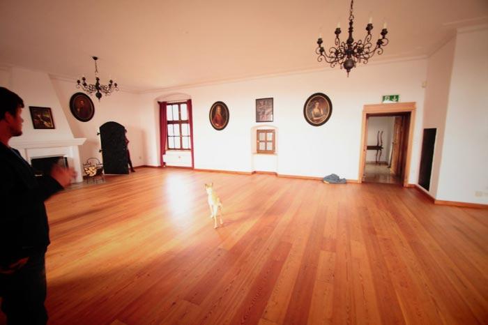 Schloss Steyregg Fetzy 30er